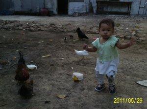 lariiiii... kejar ayamnya \(^,^)/